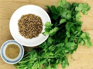 Del cilantro se usan sus brotes pero también sus semillas...